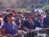 ucla-jazzreggae-festival-4