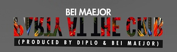 party at the crib bei maejor diplo